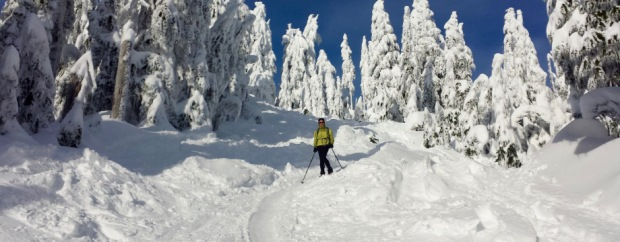 Hollyburn Peak Cypress Provincial Park: Snowshoeing Season is on