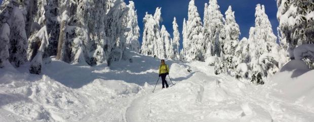 Hollyburn Peak Cypress Provincial Park: Snowshoeing Season is on