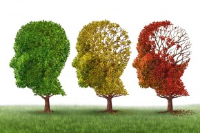 Alzheimer's Myths and Facts