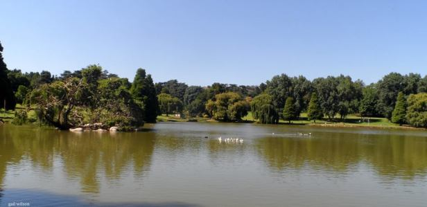 Kensington Johannesburg 3