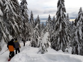 Snowshoeing in Whistler's Callaghan Valley and Vancouver's North Shore Mountains